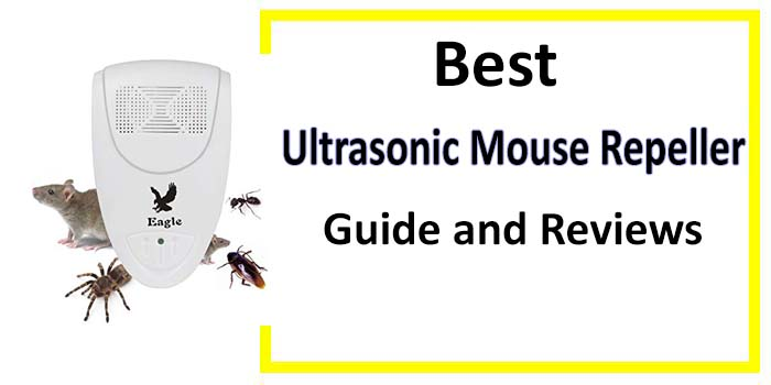 Best Ultrasonic Mouse Repeller